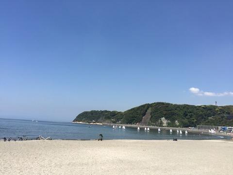 やっぱり海が好きっ♡(日々の数字との格闘から力を抜く私の居場所)